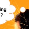 Effective Content Marketing Resources- Sunshine Coast Workshop